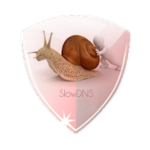 Download SlowDNS VPN For PC Windows 10,8,7 And Mac