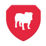 BullGuard VPN for PC - How To Install (Windows And Mac)