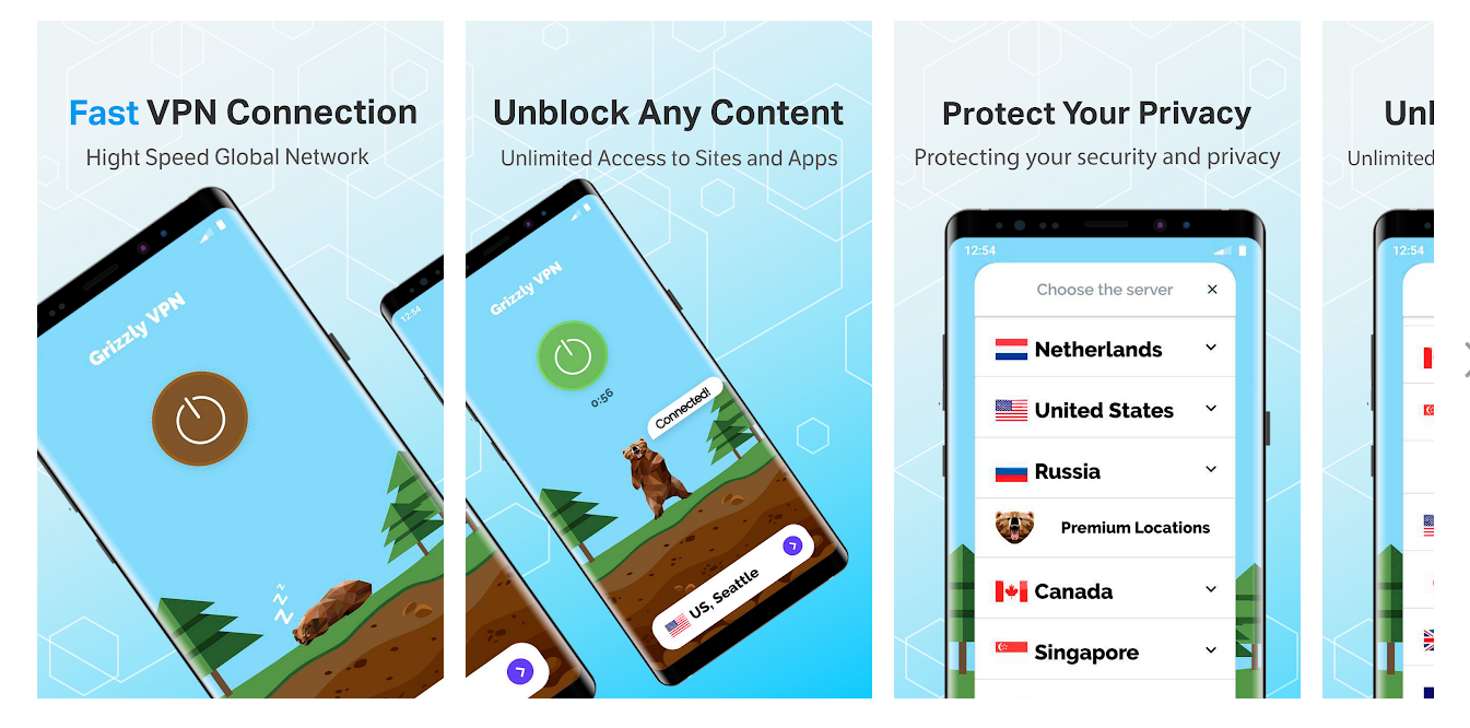Grizzly VPN for PC