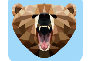 Grizzly VPN for mac