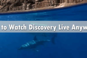 How to Watch Discovery Live Anywhere